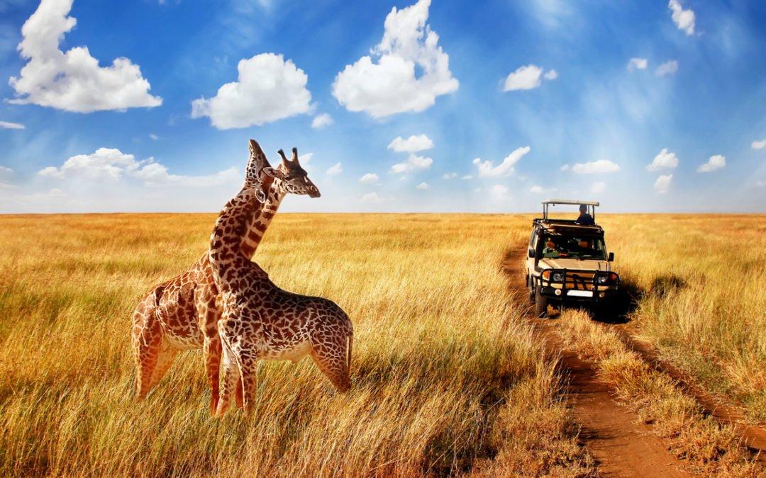 Does Max Secure Anti Virus Plus Work With Safari?